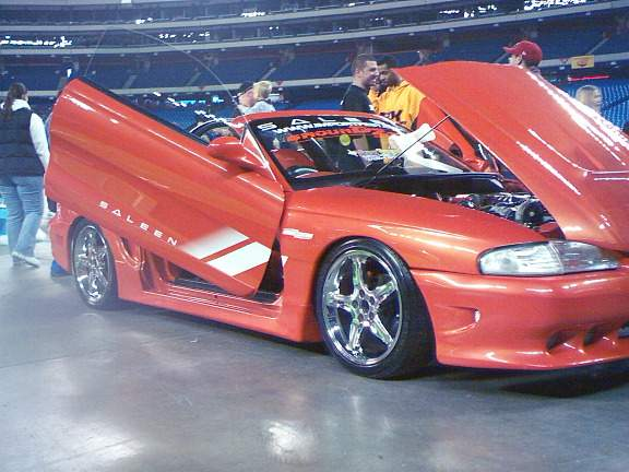 Mustang Wild Doors.jpg